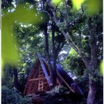 "Experimental Timber ""Tree House"", West Cork"